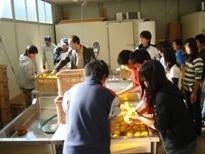 小学生の加工場見学2